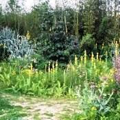 Jardin en mouvement Parc André Citroën