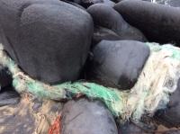 rochers et filets